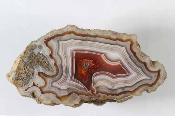 Laguna Agate with fine banding - Thom Lane