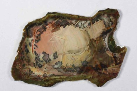 Jasper slab with dendrites.