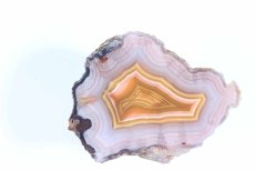 Laguna Agate with intense violet colors in center.