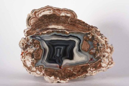 Dramatic Baker T'egg with black and white agate