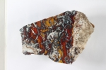 Yellow, red, black and white breccia in this large specimen